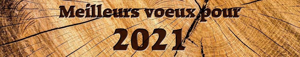 O.Bise_voeux_2020